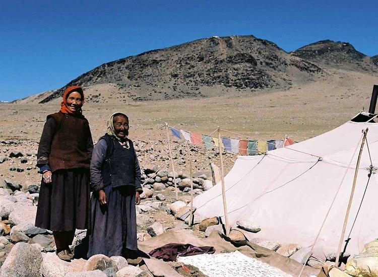 Changthang-Ladakh