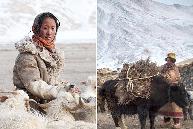 Kos Kar (Changpa nomads clothing)